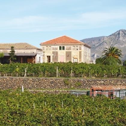 Castiglione di Sicilia, Etna Wine
