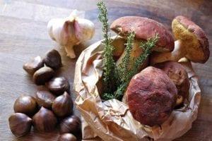 Compiano_funghi e castagne