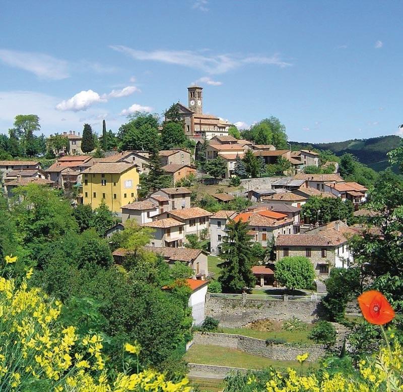 Comune Di Pavia Polizia Locale: Borgo Di Fortunago